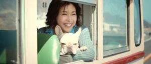 dog,bus