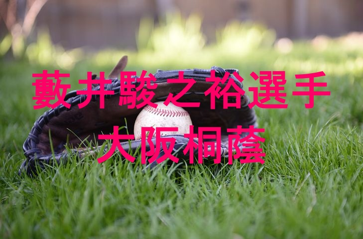 baseball,photo