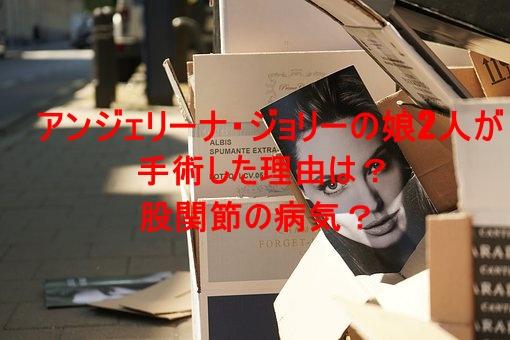 box,photo