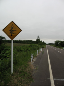 road,photo