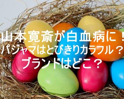 eggs,photo