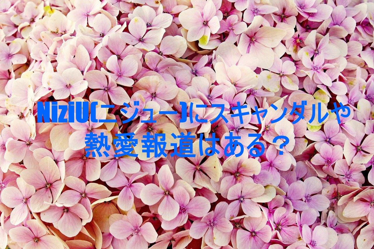 flower,photo