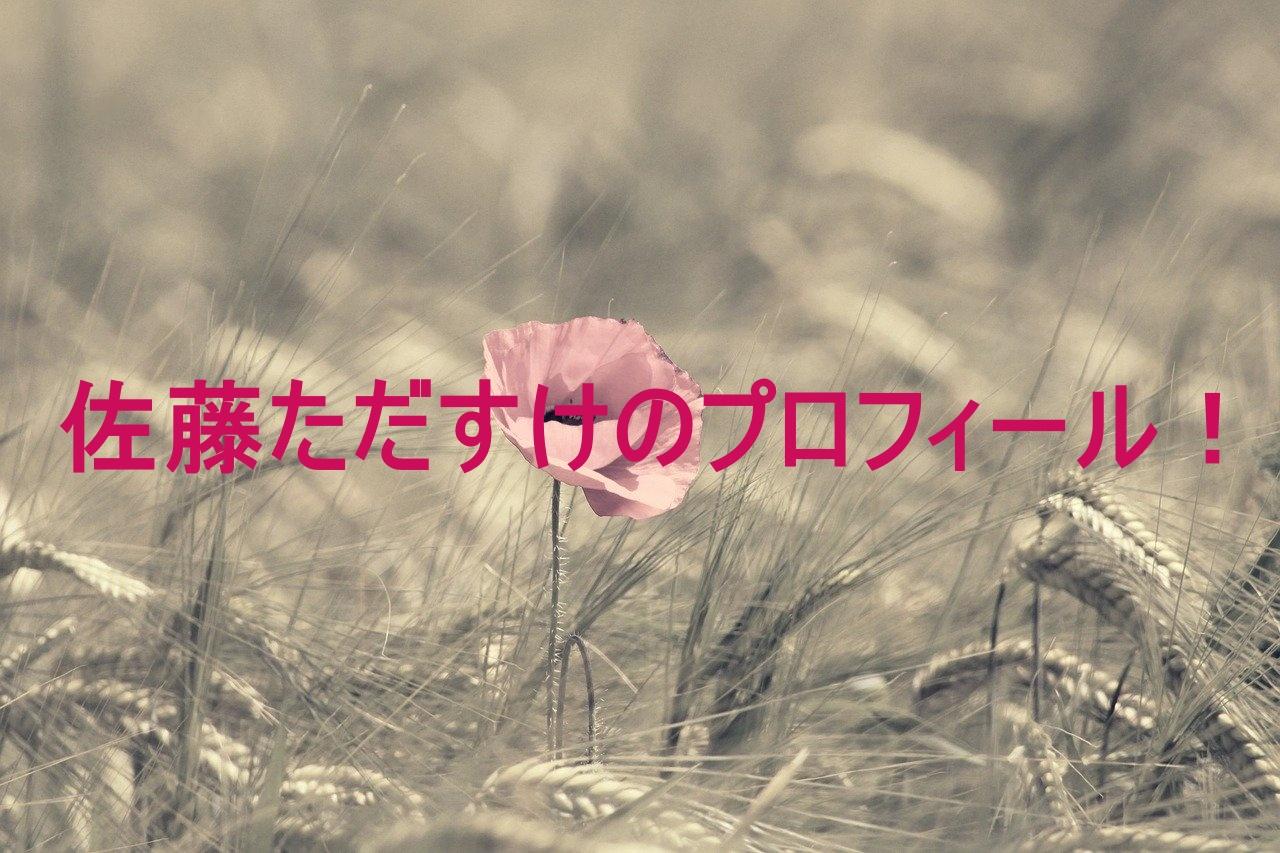 poppy,photo